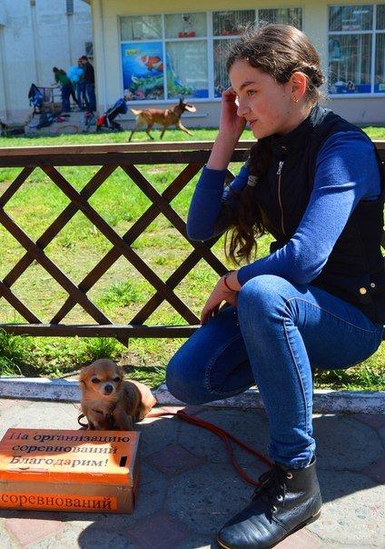 В Черноморске прошли соревнования по фристайлу (+фото) (фото) - фото 1