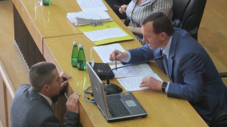Сесія в Ужгороді: майстерні - художникам, землю - депутатам (ФОТО), фото-2