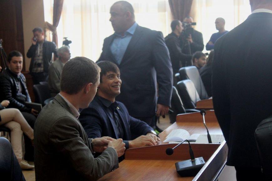 Сесія в Ужгороді: майстерні - художникам, землю - депутатам (ФОТО), фото-13