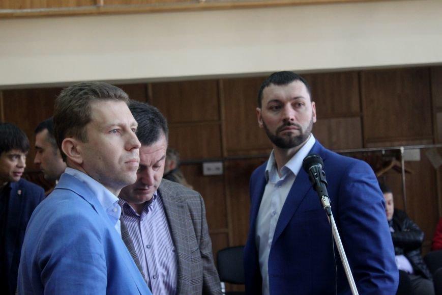 Сесія в Ужгороді: майстерні - художникам, землю - депутатам (ФОТО), фото-4