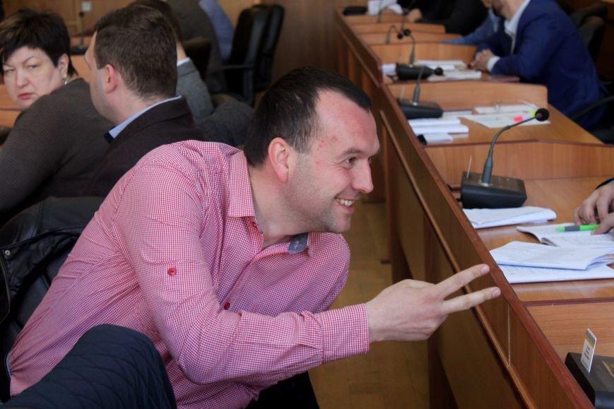 Сесія в Ужгороді: майстерні - художникам, землю - депутатам (ФОТО), фото-5