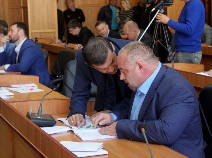 Сесія в Ужгороді: майстерні - художникам, землю - депутатам (ФОТО), фото-11