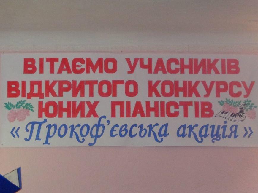 В Красноармейске зацвела «Прокофьевская акация» (фото) - фото 4