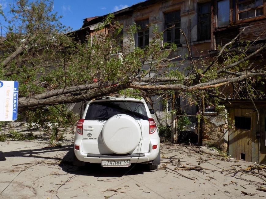 В центре Симферополя рухнувшее дерево придавило машину: Чудом никто не пострадал (ФОТО) (фото) - фото 2
