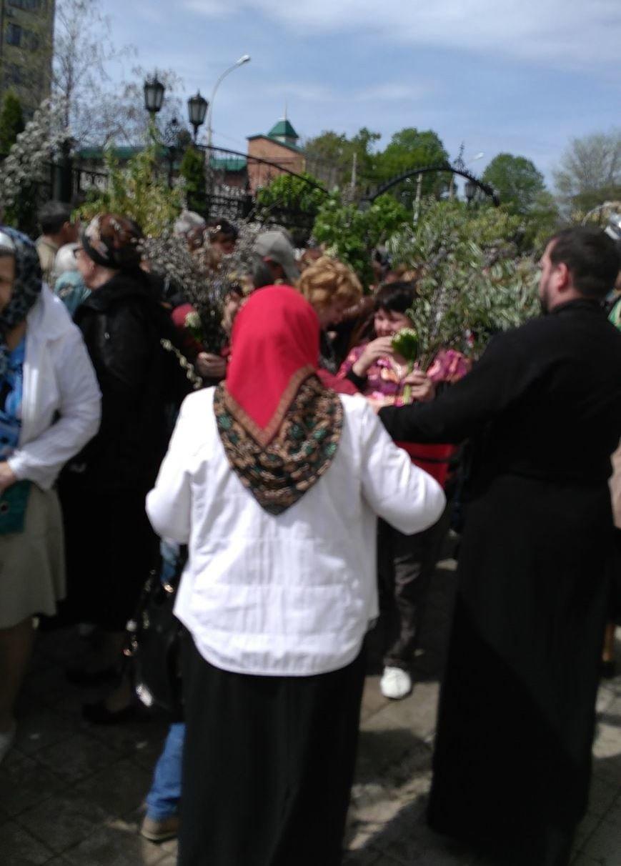 Православные христиане  Армавира  отметили Вербное воскресенье (фото) - фото 1