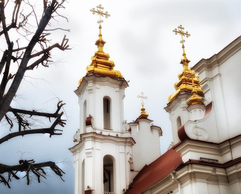 Православные христиане Витебска встретили Вербное воскресенье, фото-5