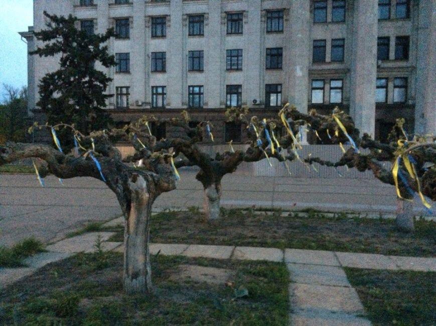 ba39de048123ba7cfb3e183cb09fc18c Куликово поле в Одессе завесили патриотическими ленточками