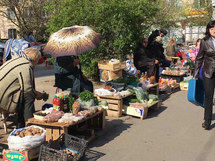 Полиция штрафует торгующих на стихийных рынках, а криворожане выстраиваются к ним в очередь за молоком и мясом (ФОТО), фото-8
