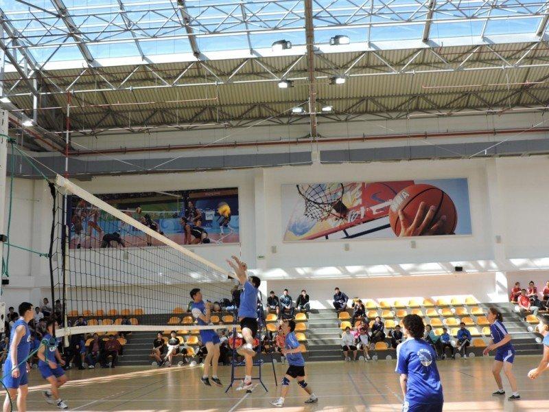 Определили победителей турнира по волейболу в Актау (фото) - фото 1