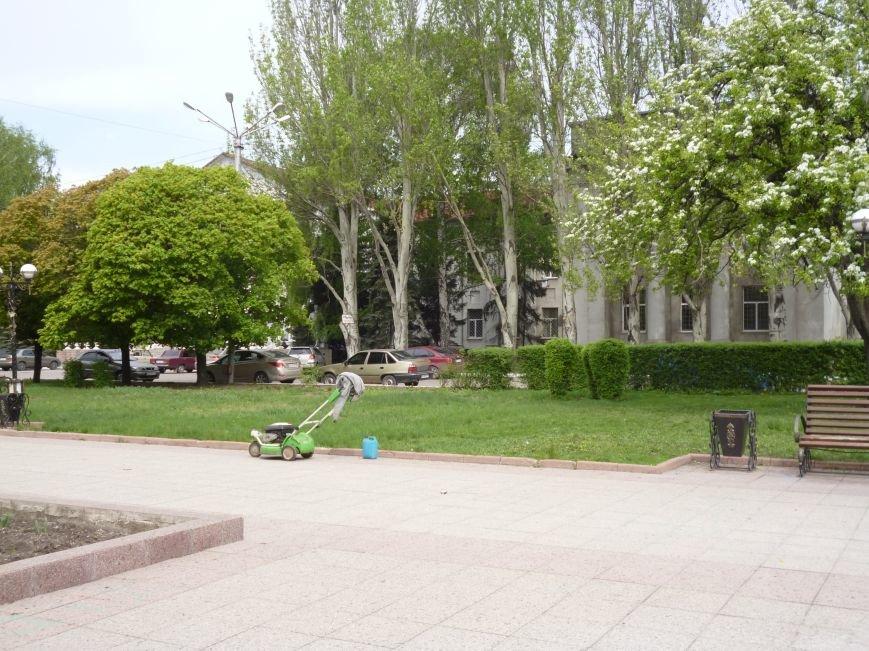 В Красноармейске (Покровске) принялись косить траву:  центральный газон города травинка к травинке (фото) - фото 2