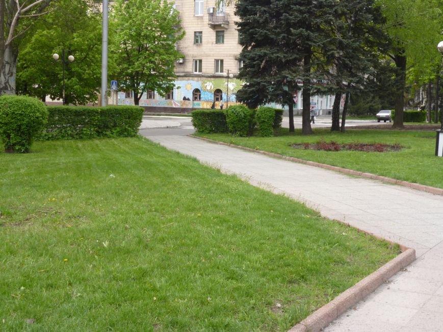 В Красноармейске (Покровске) принялись косить траву:  центральный газон города травинка к травинке (фото) - фото 3