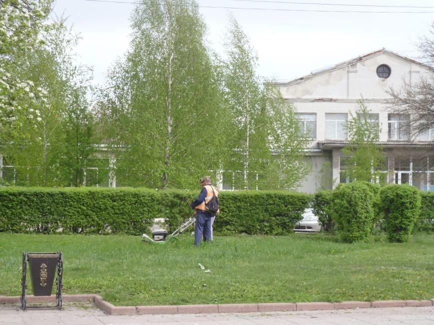 В Красноармейске (Покровске) принялись косить траву:  центральный газон города травинка к травинке (фото) - фото 1