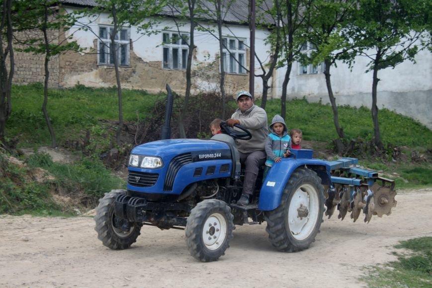 Один день з життя циганського табору на Ужгородщині: фоторепортаж, фото-24