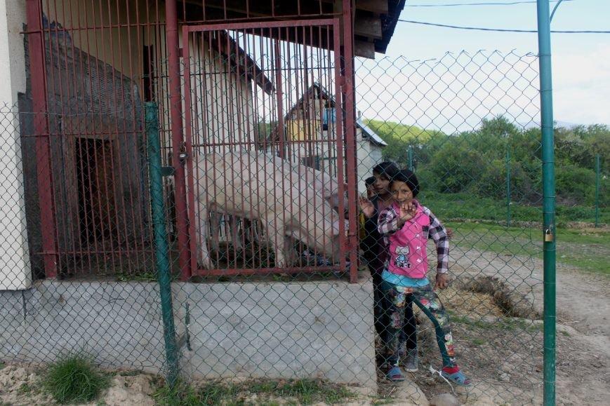 Один день з життя циганського табору на Ужгородщині: фоторепортаж, фото-4