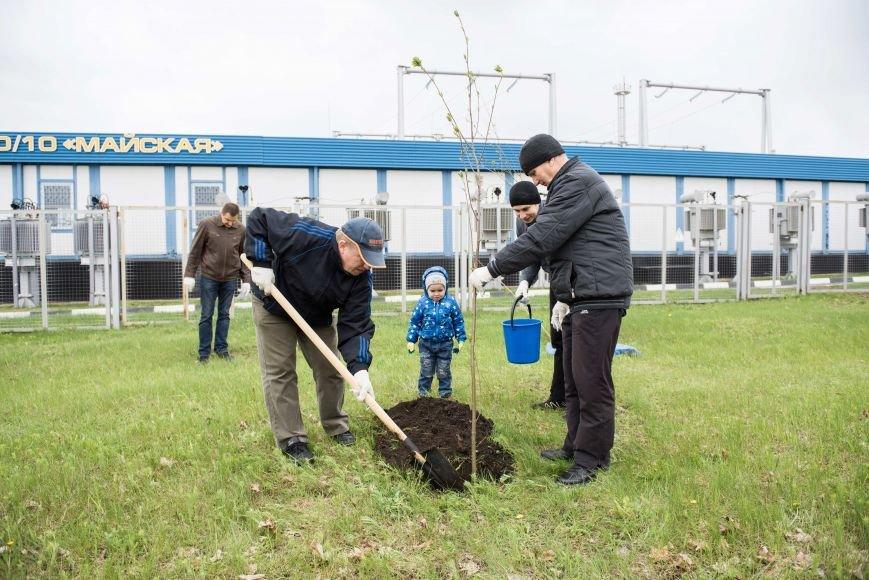 На субботнике белгородские энергетики высадили деревья и покрасили подстанции, фото-2