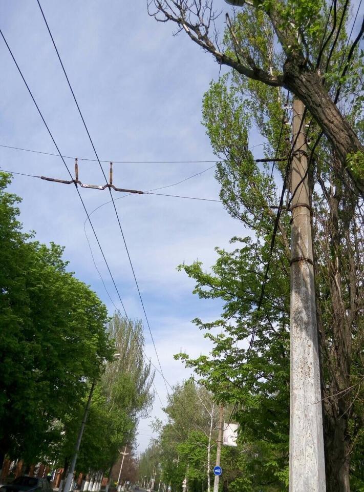 В Мариуполе ни одна из служб не хочет  отвечать за сорванный на пр. Лунина, 3 контактный  провод (ФОТО), фото-1