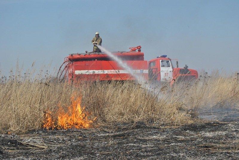 В Балаковском районе загорелся стог сена (фото) - фото 1