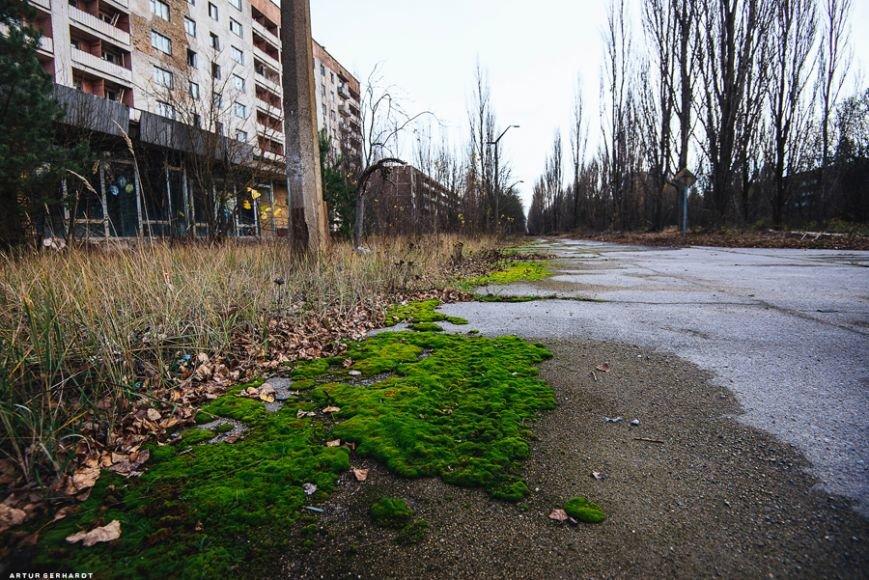 Чернобыль 30 лет спустя: причина смерти сотен тысяч человек или международный аттракцион (ФОТО), фото-40