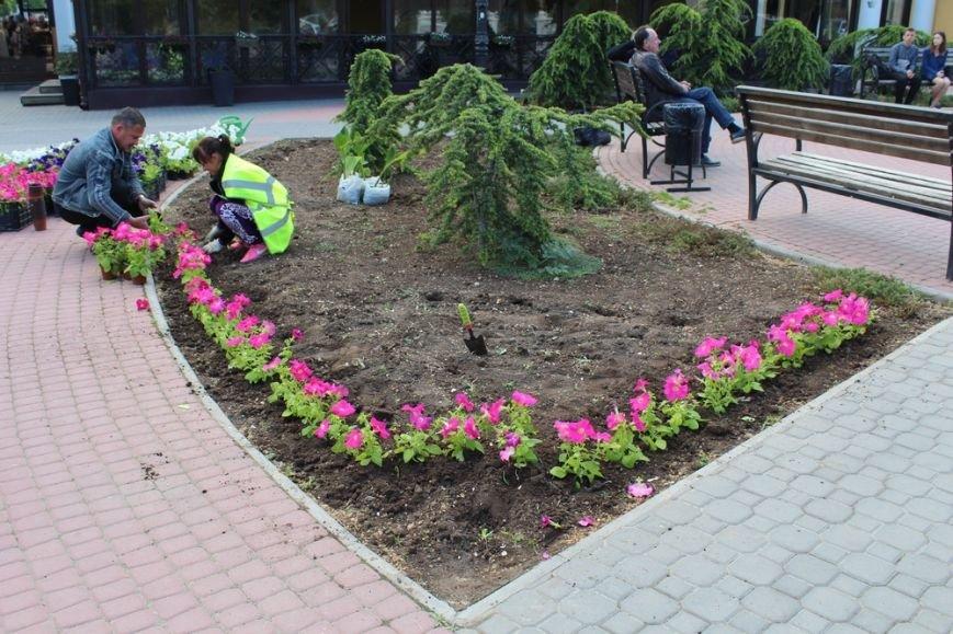 В скверах Симферополя начали высаживать цветы (ФОТО) (фото) - фото 3
