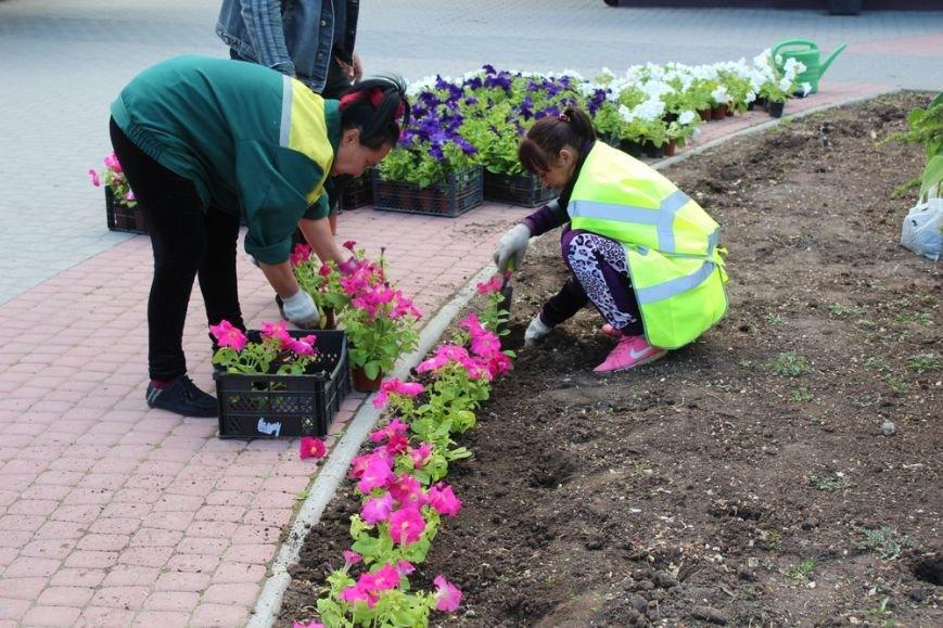 В скверах Симферополя начали высаживать цветы (ФОТО) (фото) - фото 2