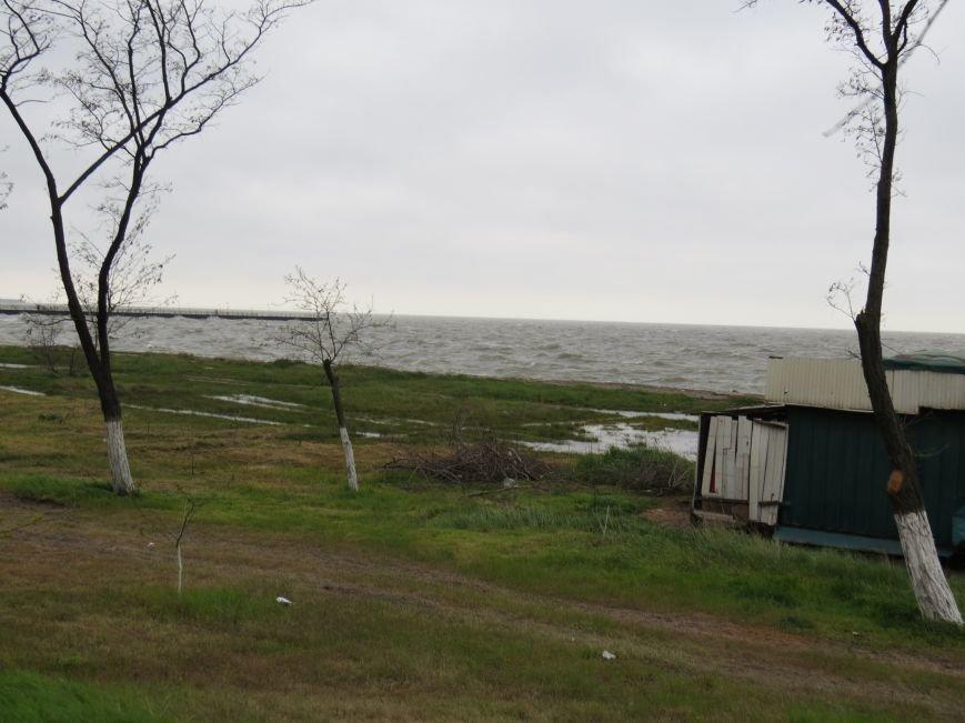 В Мариуполе участники морского субботника забыли вывезти ветки и убрать свалку (ФОТО), фото-2