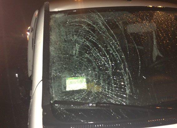 Тернополянин на автодорозі «Київ-Чоп» насмерть збив велосипедиста (фото) (фото) - фото 1