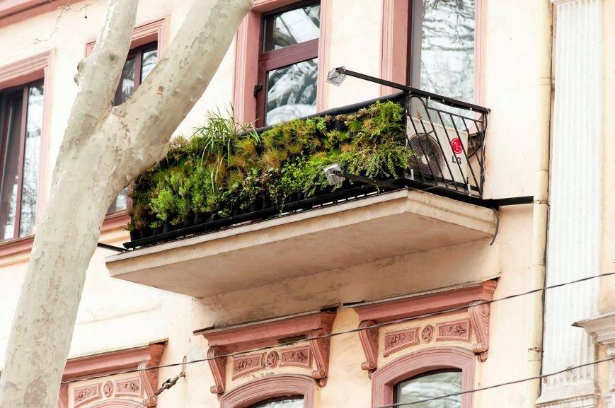 4952c0931576f277264fd4b157fab7a9 В Одессе появился первый в Украине балкон, который самостоятельно дышит
