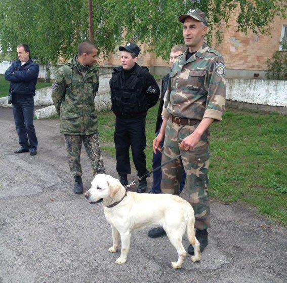 У Полтавській школі шукали вибухівку (фото) - фото 5