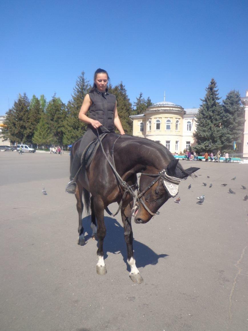 «Пони-Парк» приглашает гостей (фото) - фото 1