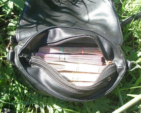 На Кировоградщине разбойник с пистолетом отобрал у женщины 250 тысяч гривен. ФОТО (фото) - фото 1