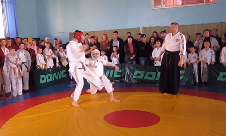 Спортсмены Красноармейска  (Покровска) и Димитрова (Мирнограда) стали лучшими в областном Чемпионате по косики каратэ (фото) - фото 8