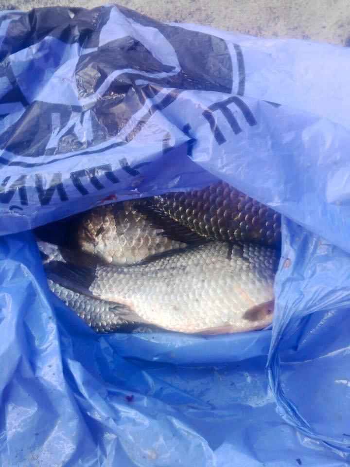 В Днепропетровске сотрудник полиции незаконно ловил рыбу (ФОТО), фото-3