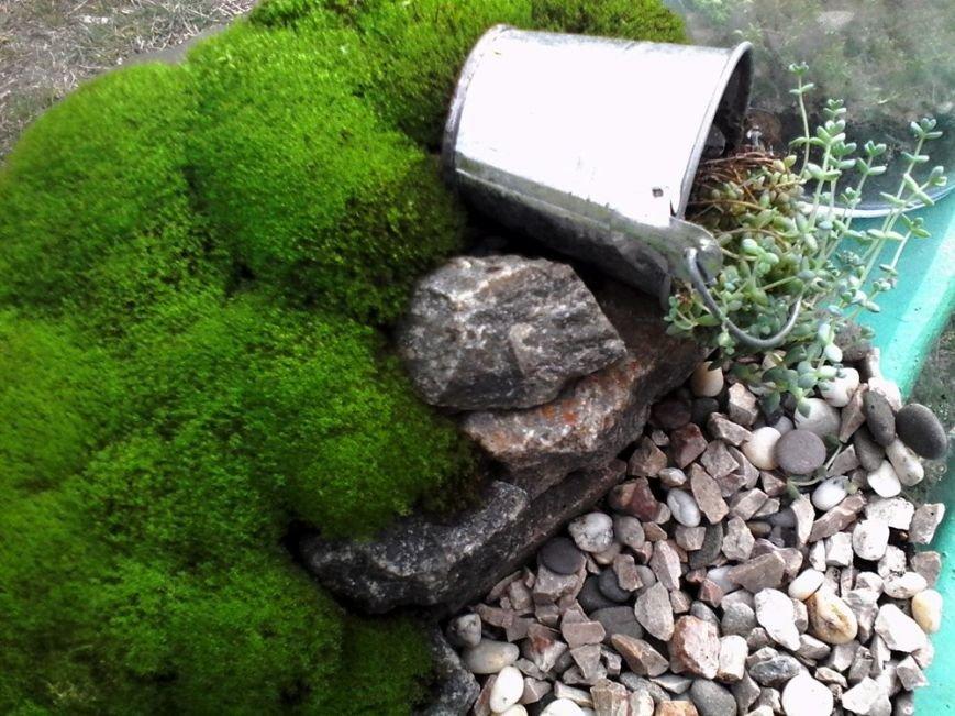 Как сделать удивительный «бутылочный сад» своими руками: опыт одесситки (ФОТО) (фото) - фото 2