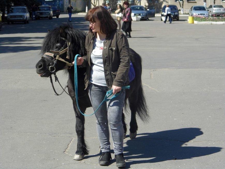 На центральной площади Первомайска состоялась ярмарка (фото) - фото 1