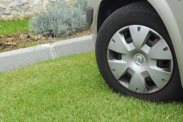 Авто-на-траве