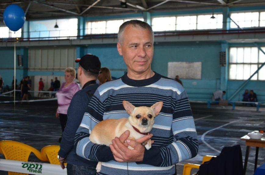 В Мариуполе лхаса апсо стала лучшей собакой Приазовья (ФОТО+ВИДЕО), фото-24