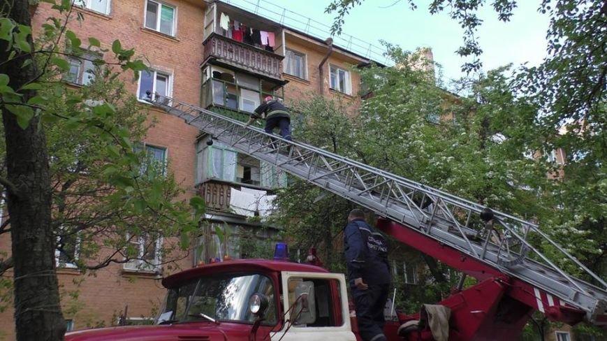 Черниговские эмчеэсники спасли кота, застрявшего в окне, фото-4