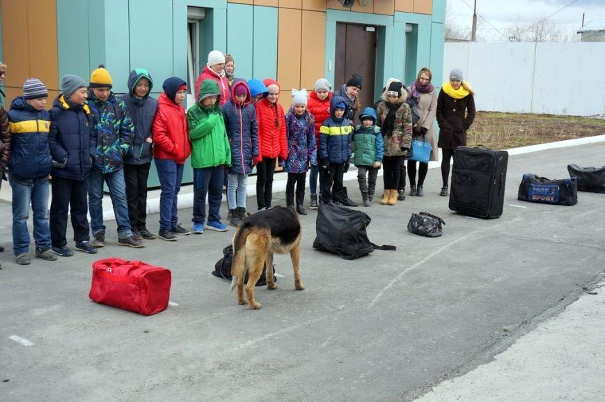 О собаках-героях рассказали сахалинским школьникам кинологи полиции, фото-3