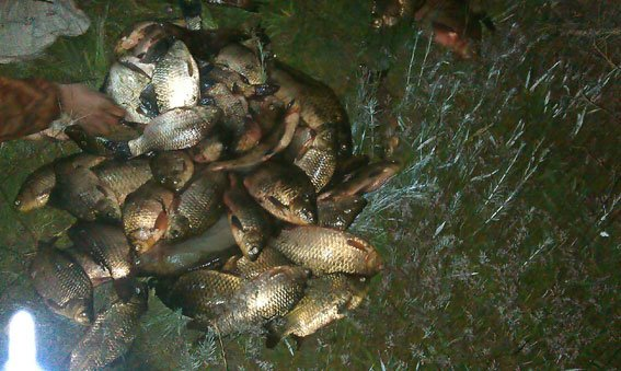 На Днепродзержинском водохранилище задержали браконьера с 62 кг рыбы, фото-1