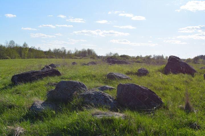 Языческое капище или древняя обсерватория? В Полоцком районе есть свой Стоунхендж, фото-3