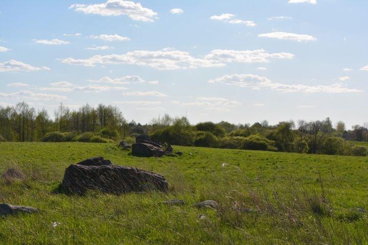 Языческое капище или древняя обсерватория? В Полоцком районе есть свой Стоунхендж, фото-4