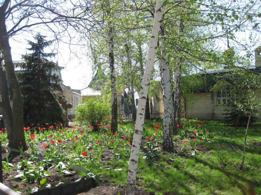 Паломники из Доброполья посетили Свято-Успенский Николо-Васильевский монастырь, фото-9