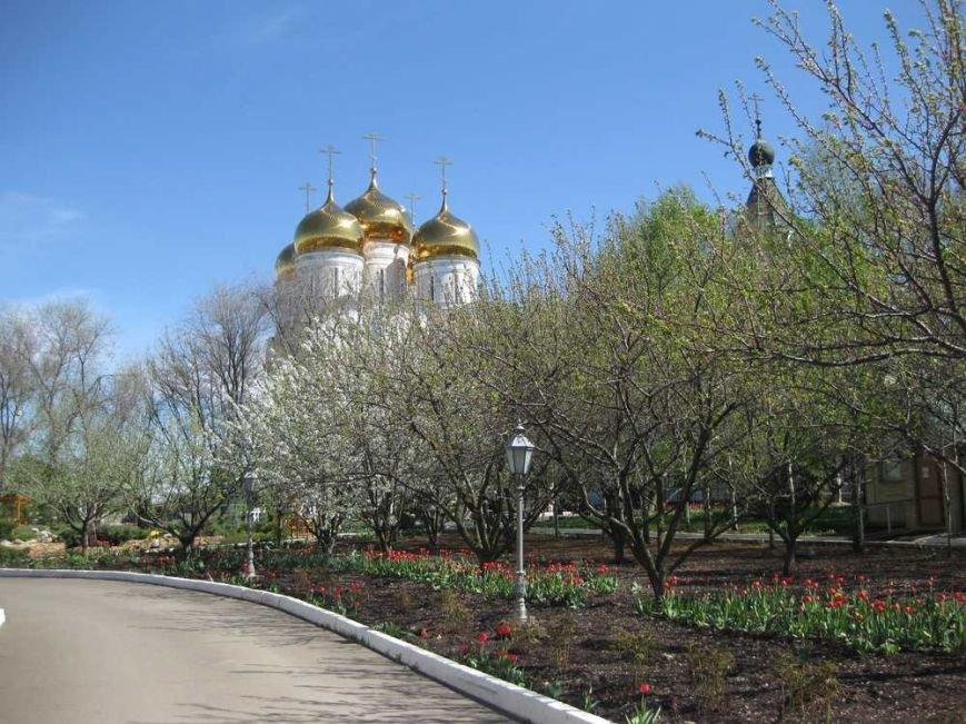 Паломники из Доброполья посетили Свято-Успенский Николо-Васильевский монастырь, фото-20