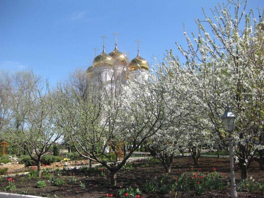 Паломники из Доброполья посетили Свято-Успенский Николо-Васильевский монастырь, фото-19