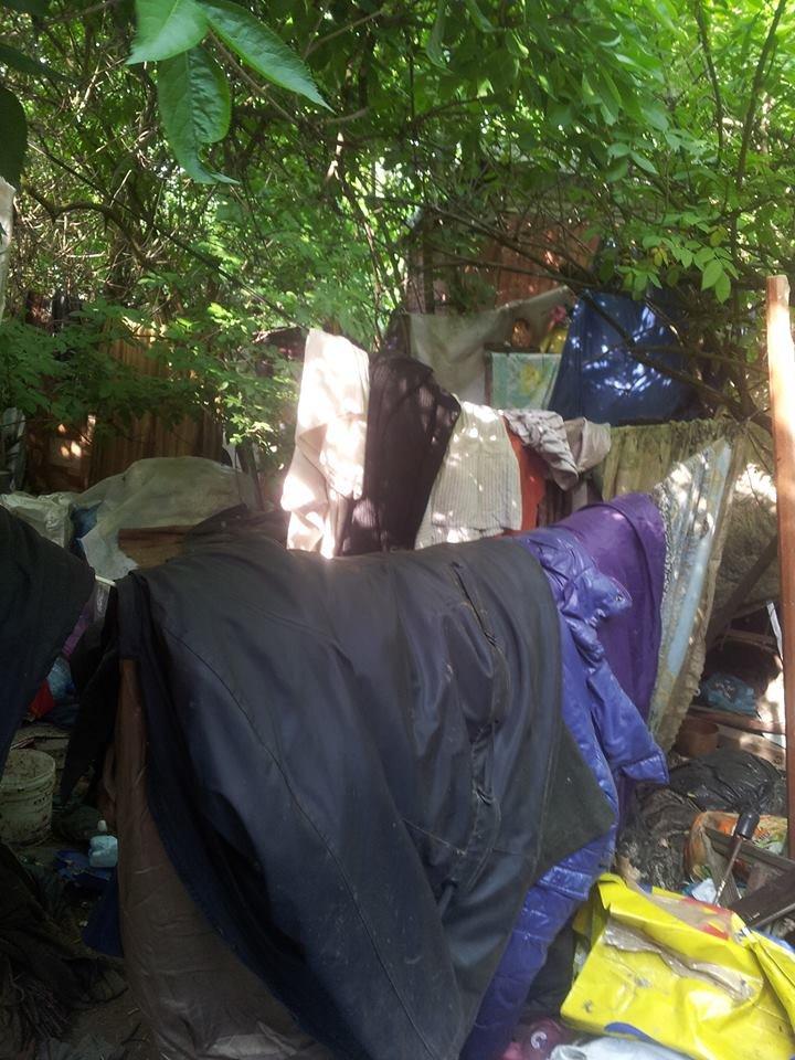 У Чернівцях сусіди побили бабусю, яка тримає в домі 20 собак, фото-3