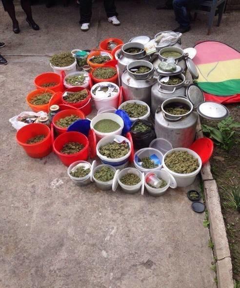 У жителя Днепродзержинска изъяли 200 кг марихуаны на 20 млн гривен, фото-4