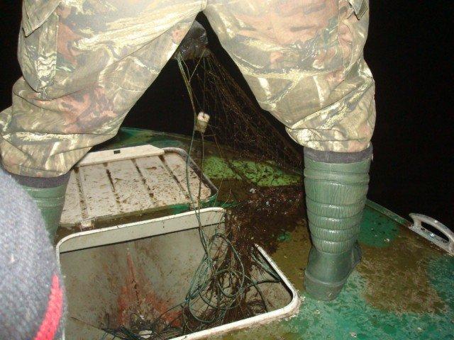 В Днепродзержинске браконьеры продолжают атаковать водные ресурсы, фото-1