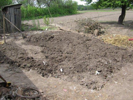 88-летнюю бабушку из Черниговской области убил и сжег сожитель ее внучки, фото-2