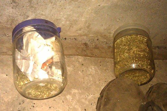 В Донецкой области мужчина устроил в собственном доме наркопритон (ФОТО), фото-2