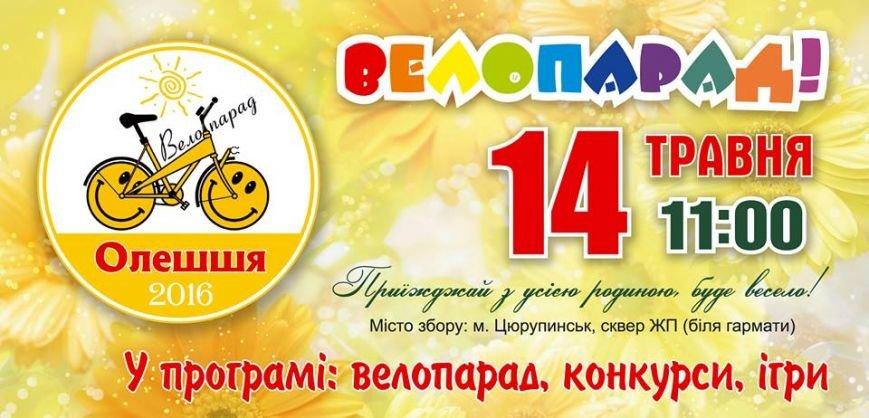 Херсонские велосипедисты готовятся принять участие в велопробеге по Цюрупинску на День семьи (фото), фото-1